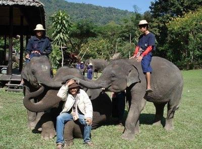elephant camp chiang mai pat_400_295