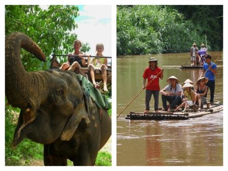 elephant riding Chiang Mai_edit_Fotor_450_337