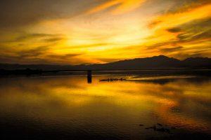 Phayao Lake, Chiang Rai