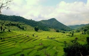 Thailand Hilltribe Holidays scenery 2